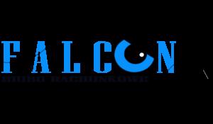 LOGO_FALCON_OK_OK_OK